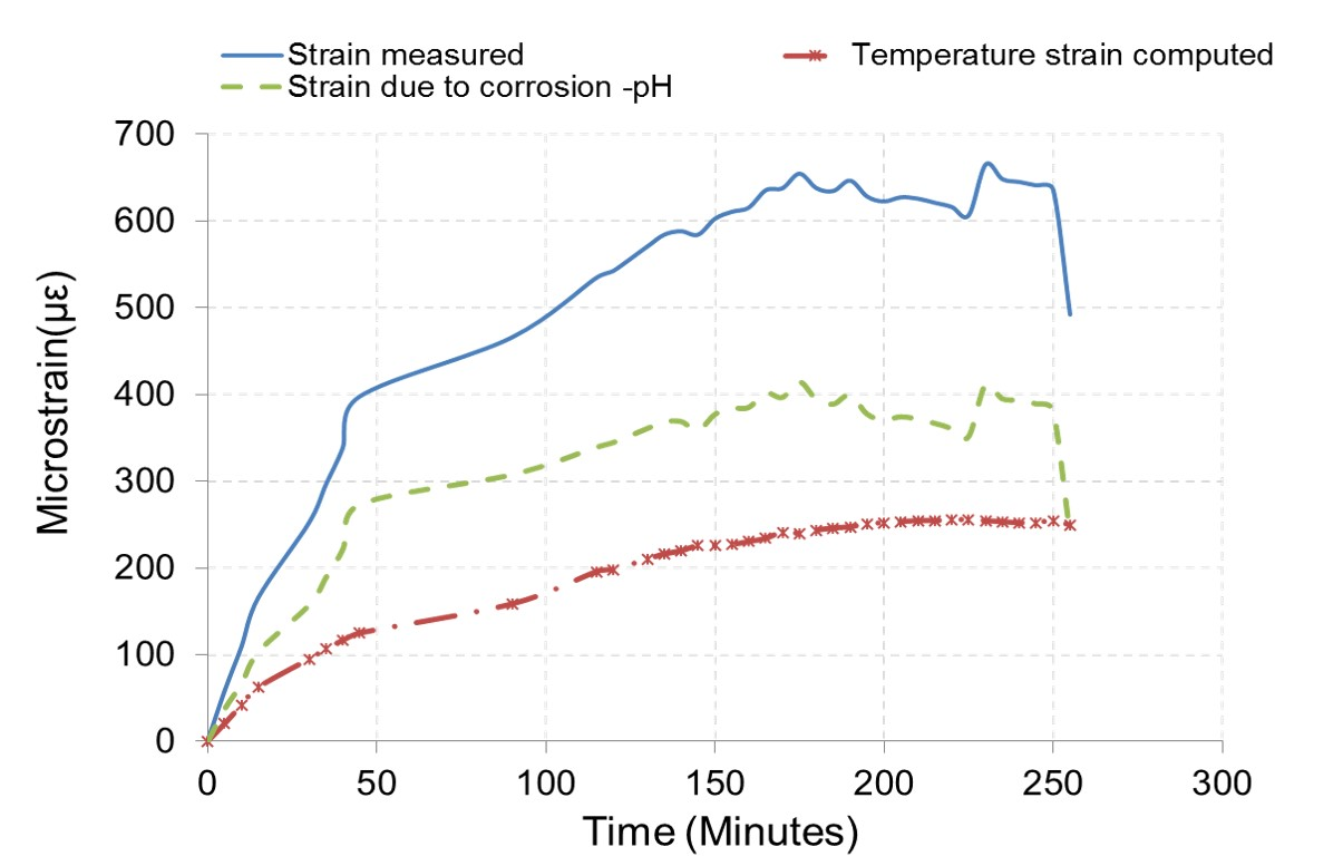 Steel Compression Members under Simulated Corrosion  and Elevated Temperature Effect